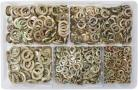 Assorted Spring Washers M5-M12 (1000)